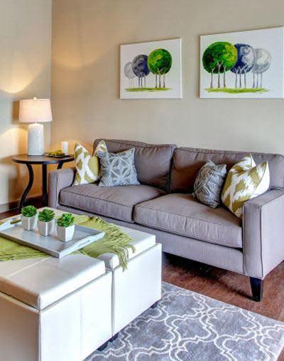 San Antonio apartments have bright living rooms
