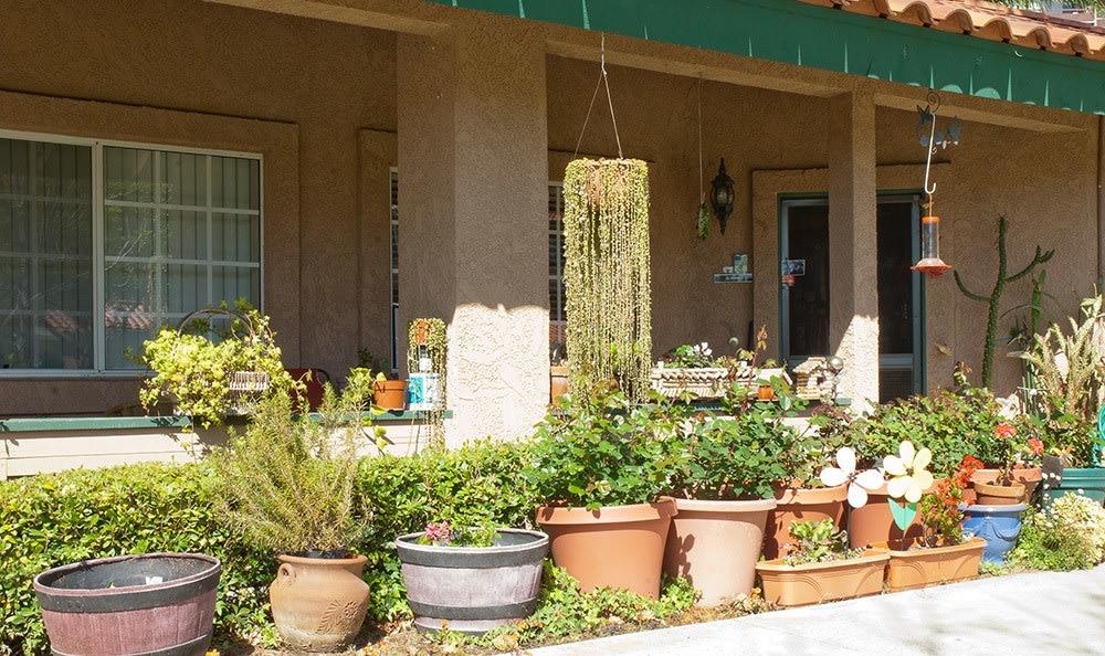 Gardening for senior in Huntington Beach, FL