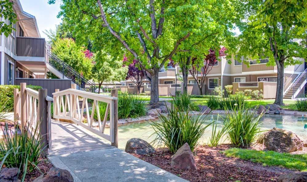 Beautiful walking paths at Sofi Berryessa in San Jose, CA