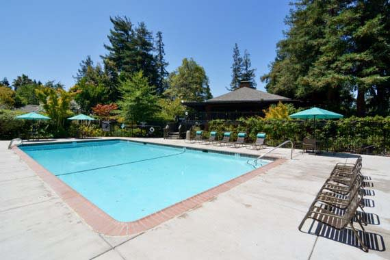 Beautiful swimming pool at Sofi Fremont in Fremont, CA