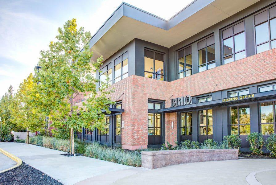 Brio Apartments Walnut Creek Ca