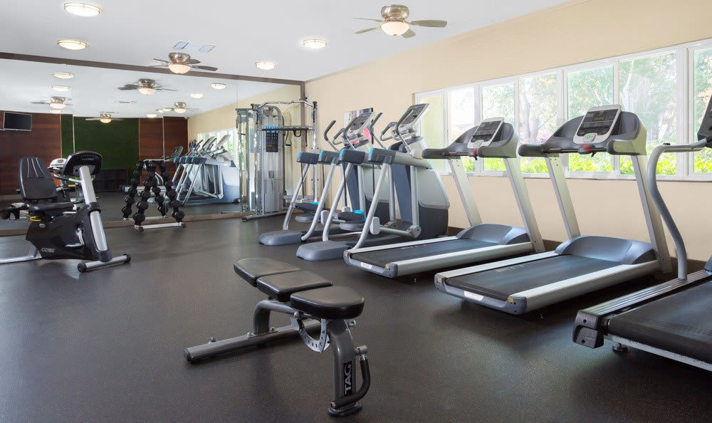 {location_city}} apartments feature a fitness room