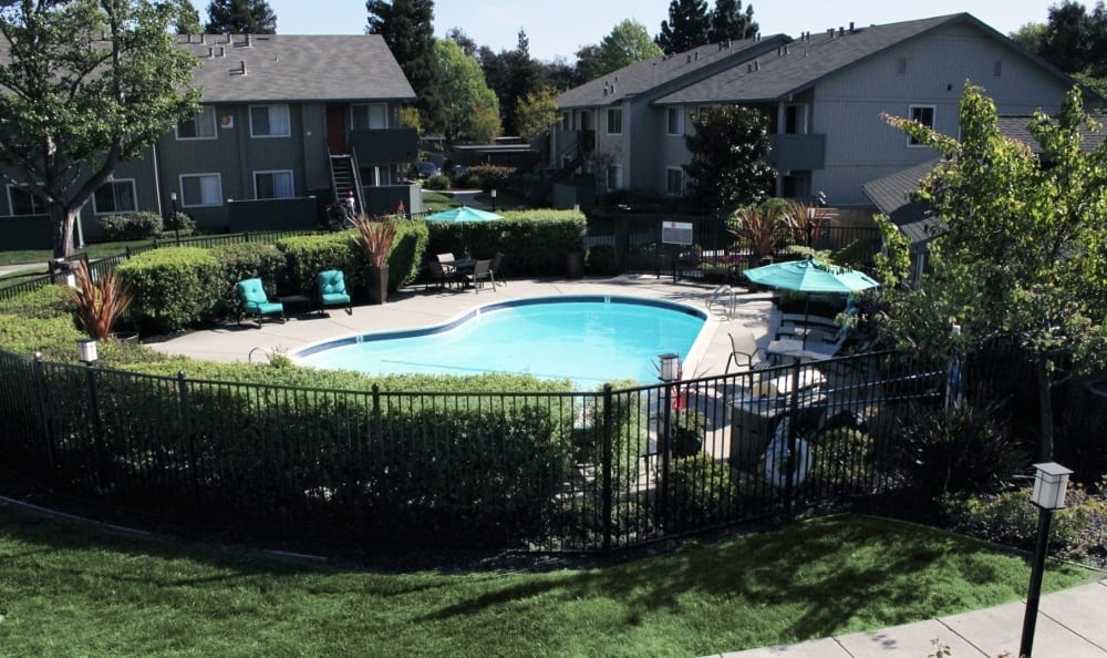 Pool at sunny apartments in Fremont