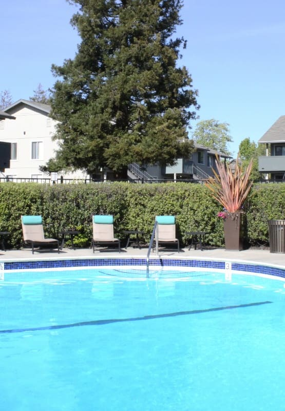 Amenities at apartments in Fremont
