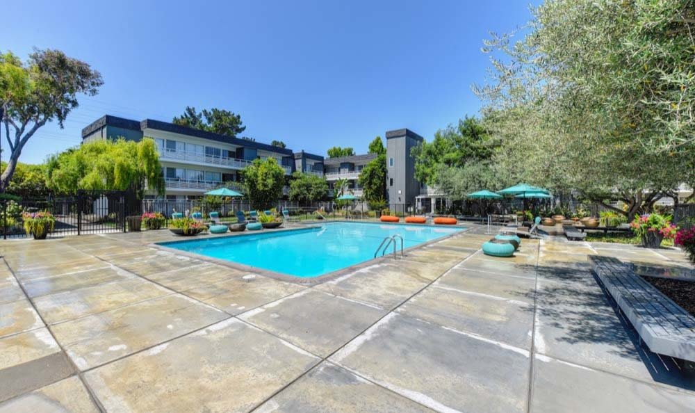 Beautiful swimming pool at Citra in Sunnyvale, CA