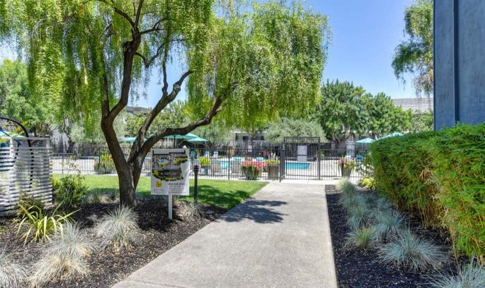 Beautiful walking paths at apartments in Sunnyvale, CA