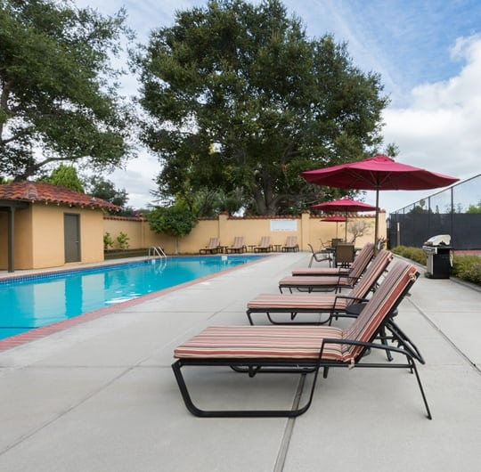 Amenities at apartments in Sunnyvale
