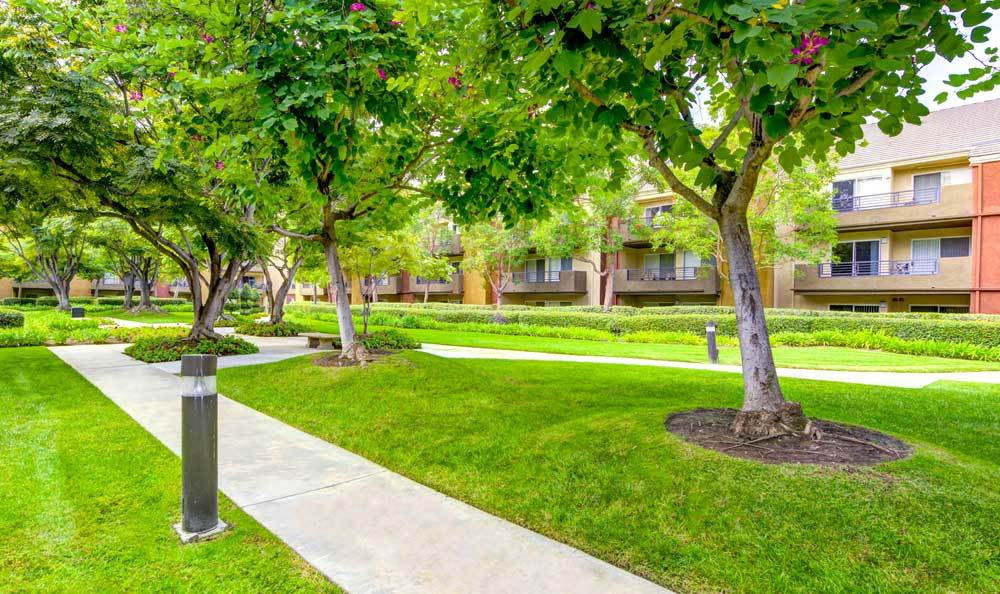 Courtyard at the apartments for rent in Irvine