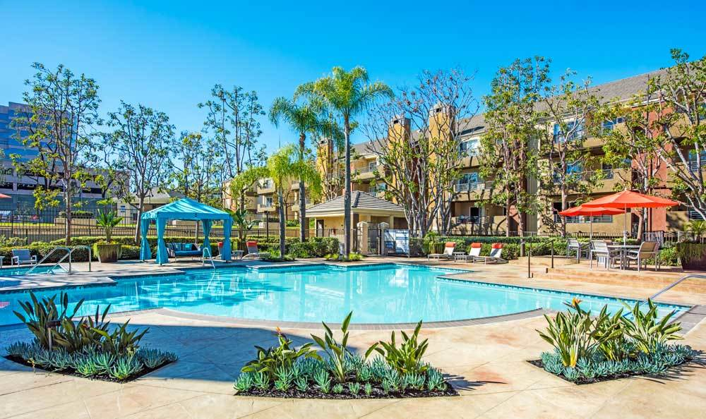A swimming pool that is great for entertaining at Sofi Irvine in Irvine, CA