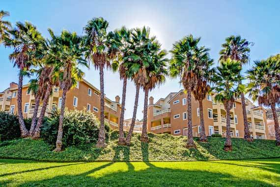Beautiful yard at apartments in San Diego, CA