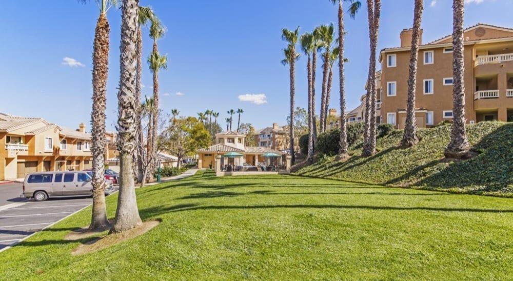 Beautiful yard at apartments in San Diego, CA