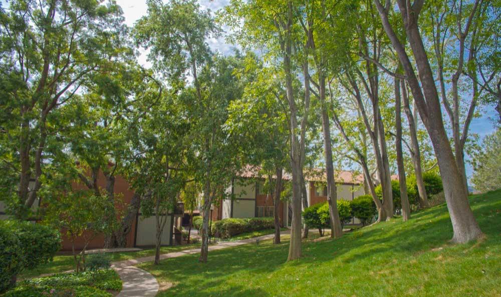 Beautiful walking paths at Sofi Thousand Oaks in Thousand Oaks, CA