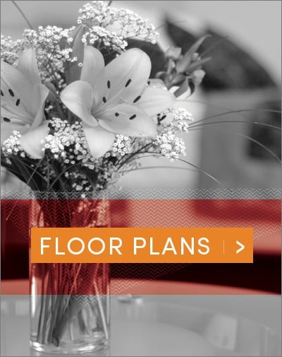 Vase of flowers embellishes an apartment with great floor plan at One Metrocenter