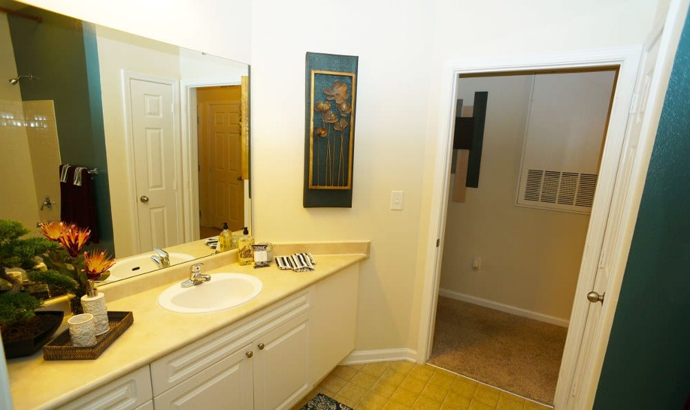 Large Bathrooms Available at Southern Oaks at Davis Park in Morrisville, NC