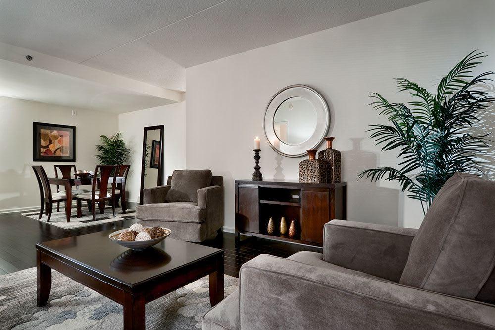 Elegant and beautiful apartments