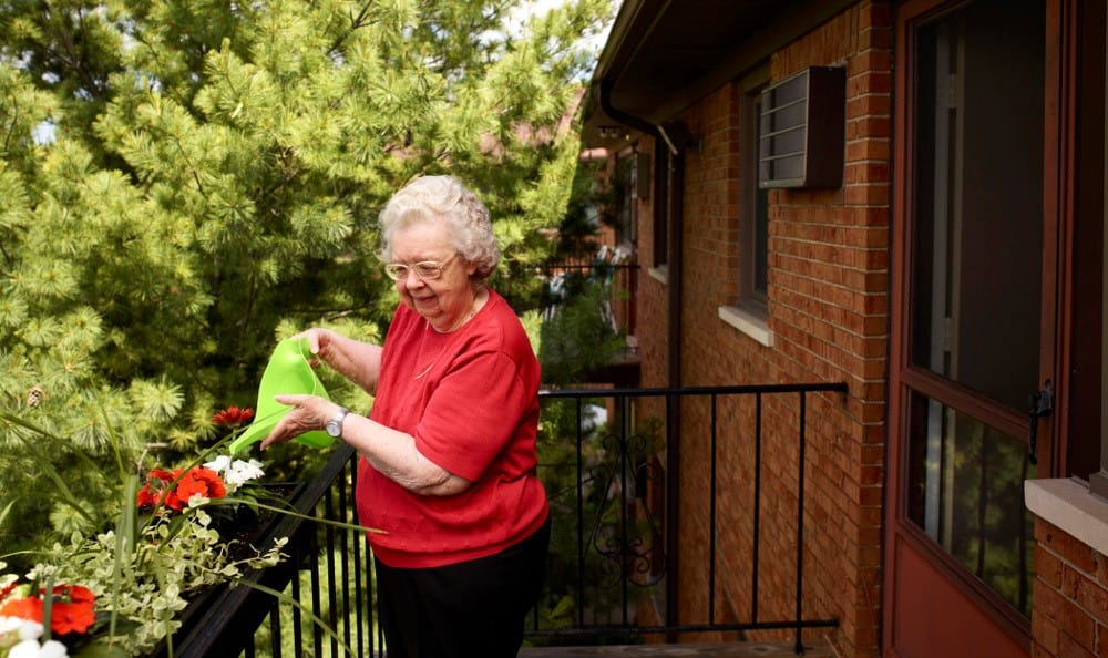 Activities At Senior Living In Roseville MI