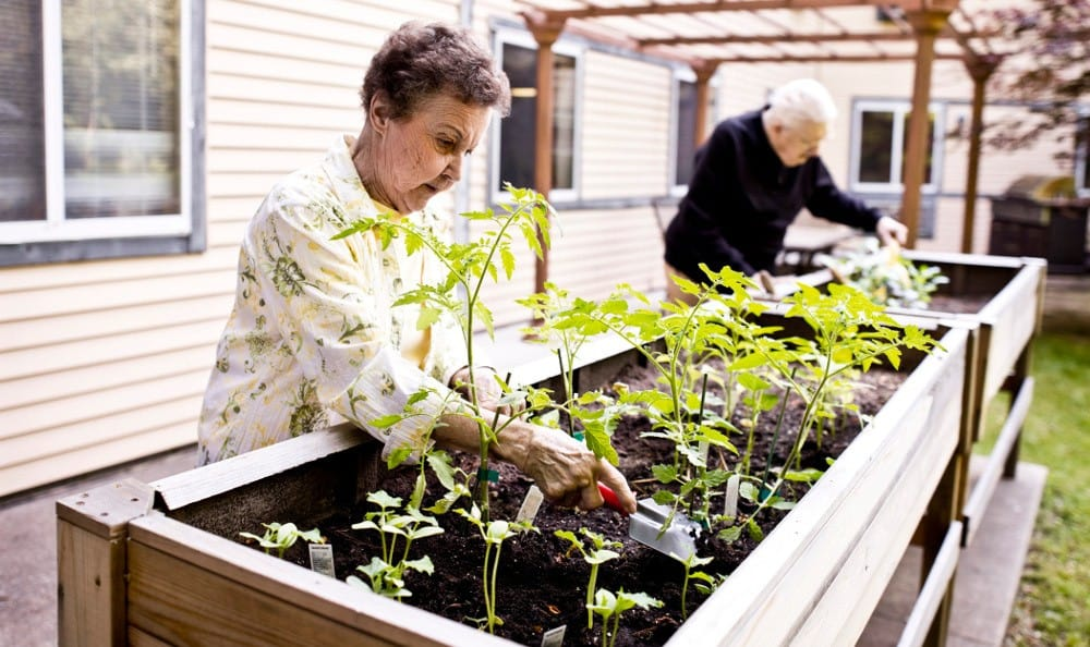 Couple Gardening At Senior Living in Westland, MI