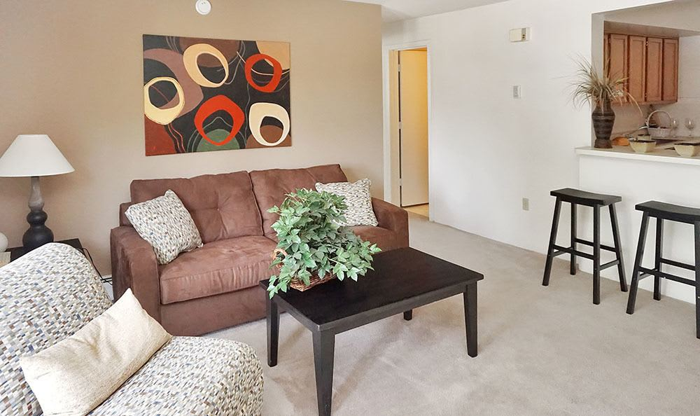 Erlanger Apartments Include Open Luxurious Living Room
