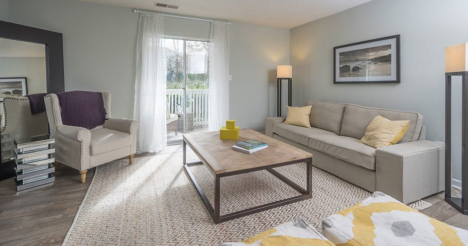 Paces River Apartments offers a luxury living room in Rock Hill, South Carolina
