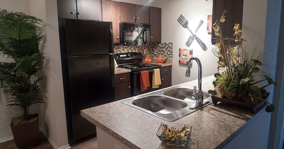 Kitchen at Republic Deer Creek Apartments in Fort Worth, TX