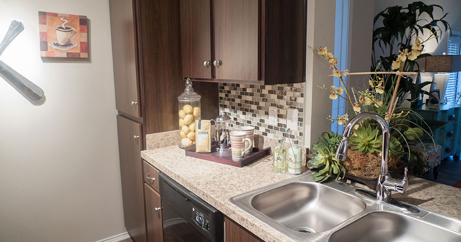 Republic Deer Creek Apartments offers a kitchen in Fort Worth, TX