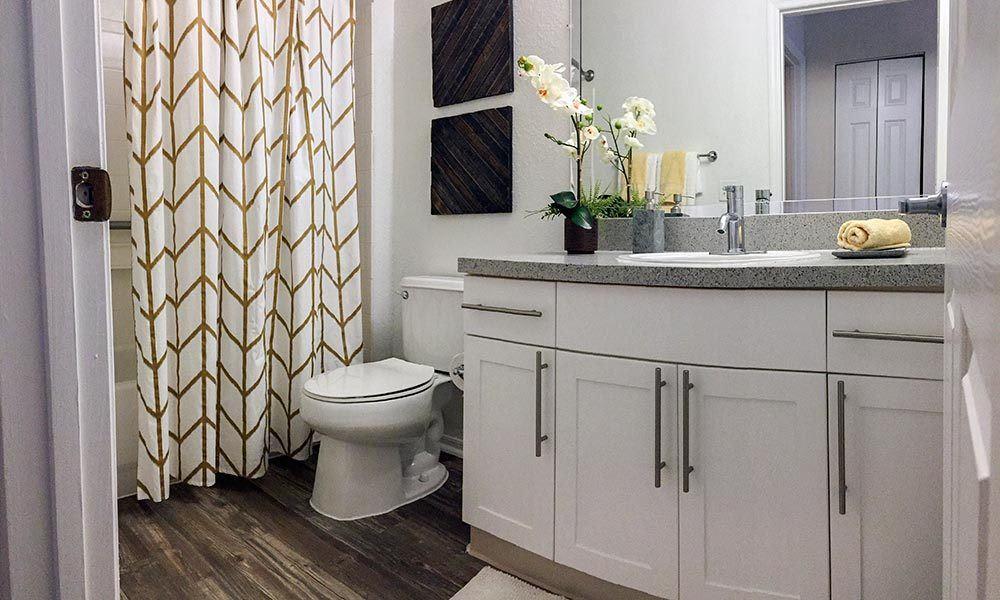 Unique bathroom at Promenade at Aloma in Oviedo, FL