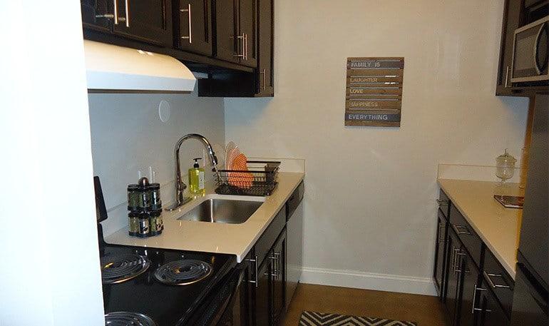 Luxury Kitchen at the Detroit Apartments