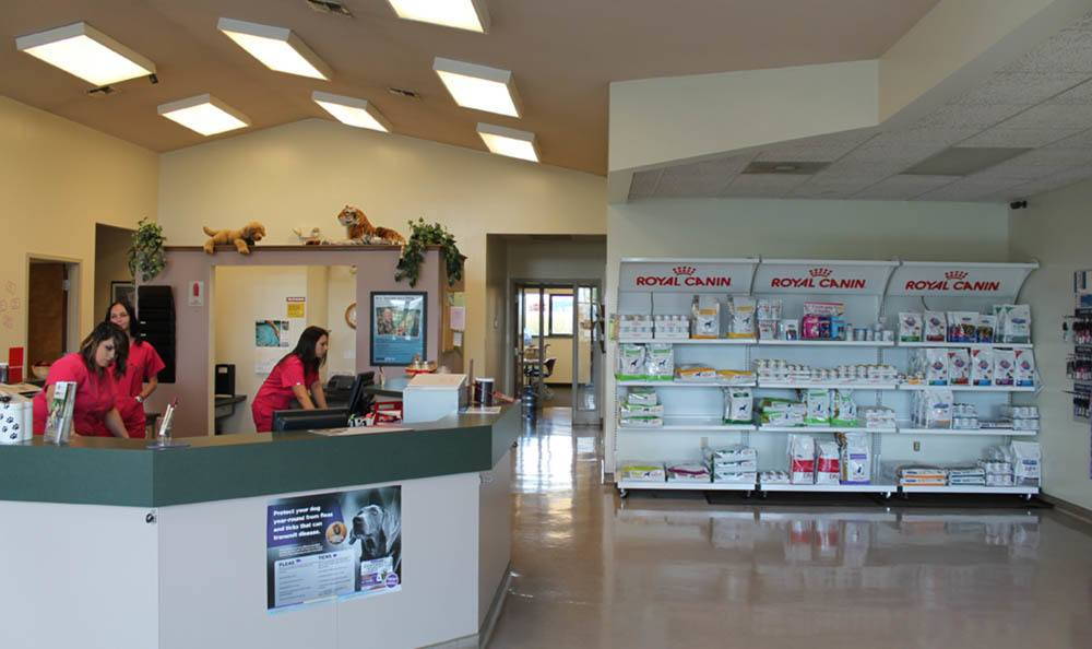 Animal Supplies Selection At Stateline Hillcrest Small Animal Hospital In Danville