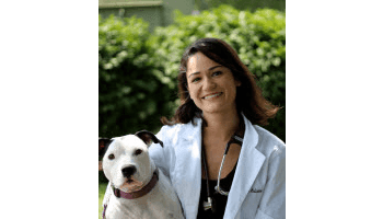 Dr. Ardisana of Stateline Hillcrest Small Animal Hospital