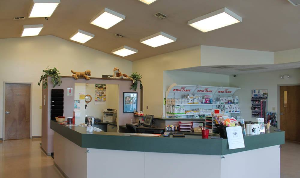 Front Counter At Stateline Hillcrest Small Animal Hospital