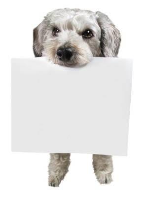 documents forms at  San Antonio