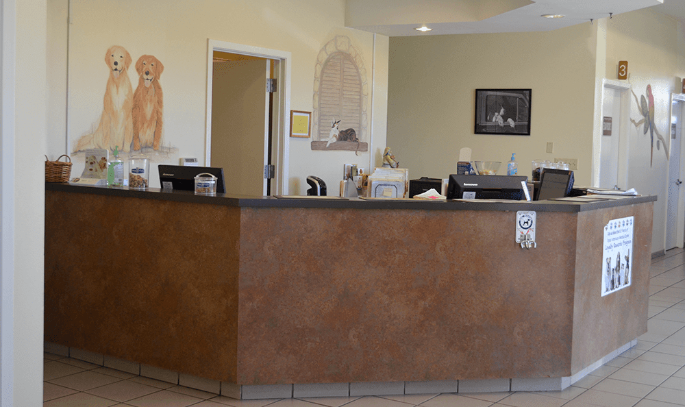 Lobby at St. Francis of Assisi Veterinary Medical Center