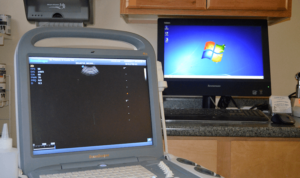 Ultrasound equipment at St. Francis of Assisi Veterinary Medical Center