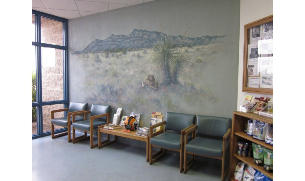 The waiting area at the Sierra Vista Animal Hospital