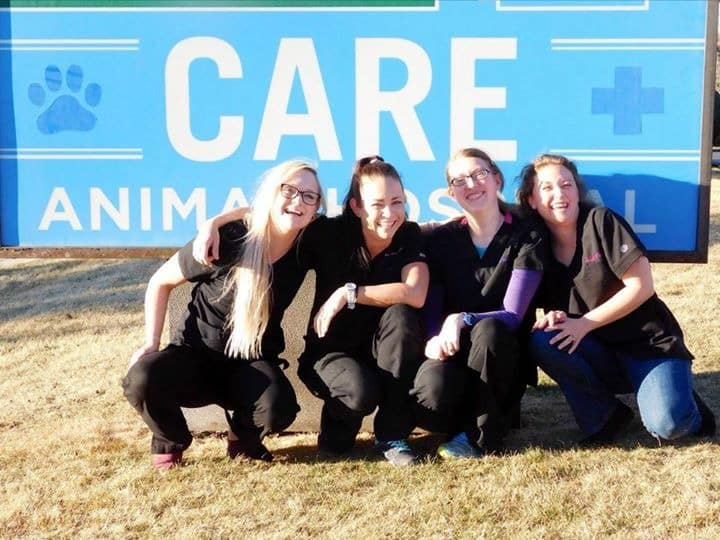 Our technicians at Care Animal Hospital