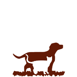 Flying Cloud Animal Hospital