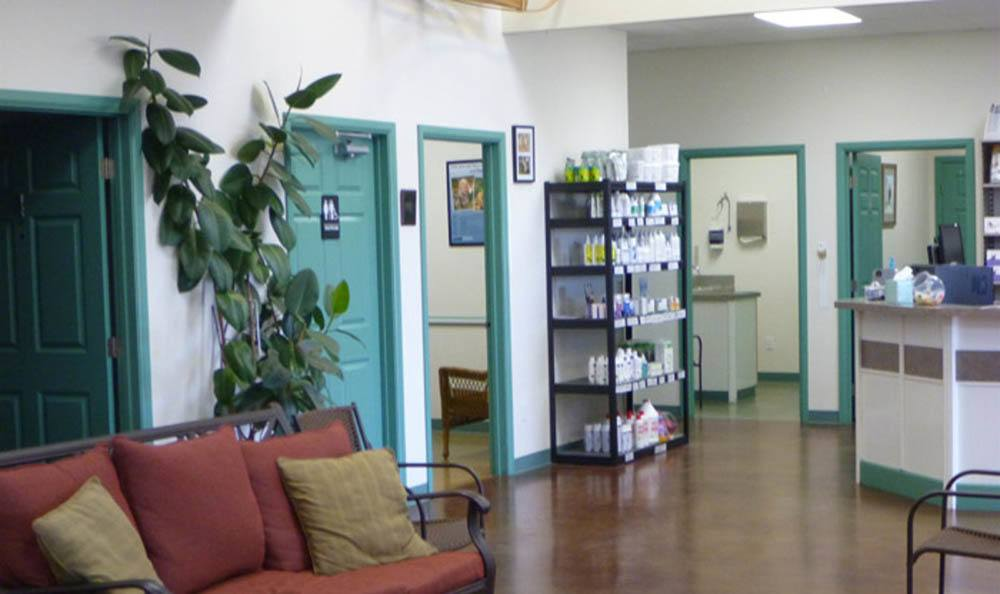Front Office At Greywolf Veterinary Hospital