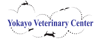 Yokayo Veterinary Center