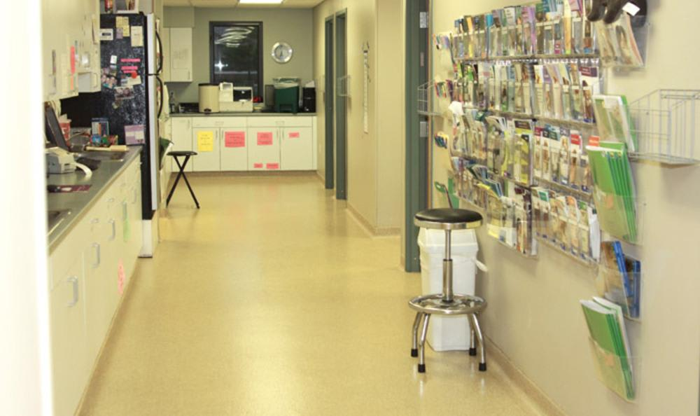 Testing at  Clarke Animal Hospital