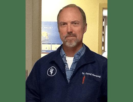 Dr. David Hertzog at Lee's Summit Animal Hospital