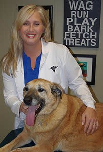 Dr. Thomas at Jefferson Animal Hospital Animal Hospital
