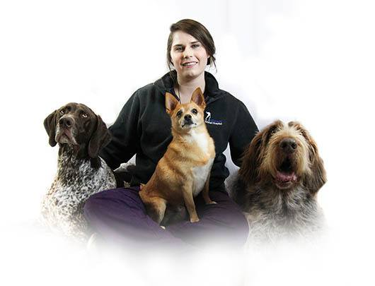 Lexi  at Baton Rouge Animal Clinic
