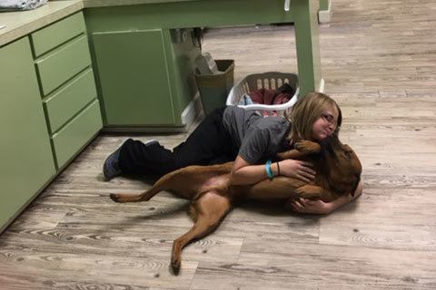 Aimee and a patient at Grandview Veterinary Clinic