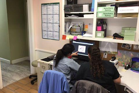Grandview Veterinary Clinic office