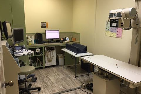 Grandview Veterinary Clinic radiology