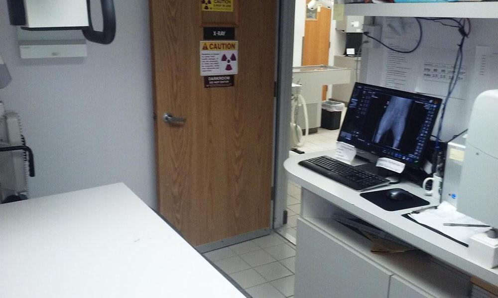 In House Lab Station At Animal Care Clinic West & Metro Cat Hospital