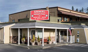 About our Newcastle Animal Hospital