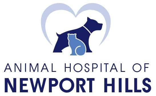 Animal Hospital of Newport Hills