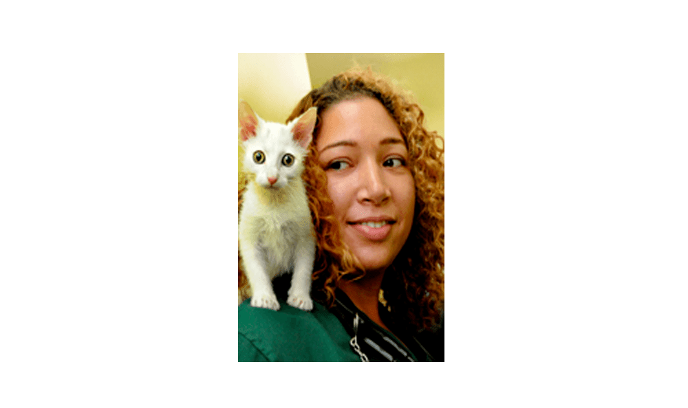 Doctor Christina East at  Riverside Animal Hospital North