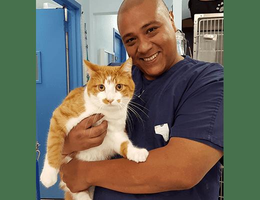 Gus at Riverside Animal Hospital North